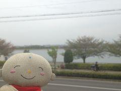 春なのにだんじり:久米田池の世界灌漑施設遺産登録を祝して