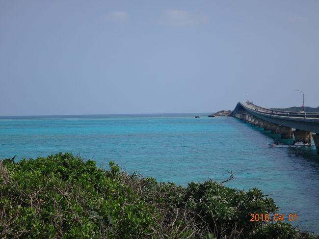 綺麗な海で泳ぎたい!!<br />シュノーケルしたい!!<br /><br />嫁に行ってしまった次女を誘ってマイル旅行。<br /><br />おとーさん、長女よごめん。<br />夏まで待てませんでした。<br /><br />噂通り「宮古島」は素晴らしかったです。