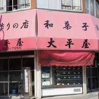 川崎宿からついでに川崎大師までのテクテク歩き~東海道の人気宿場町10位の川崎宿とはこれいかに?から、川崎大師までって普通歩かないでしょ!の道~