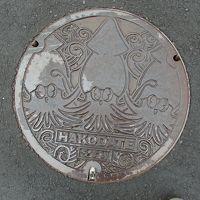 函館観光とおまけに北海道新幹線見学の旅