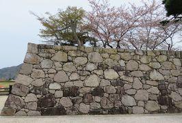 2016春、信州の桜と城巡り(24/28):4月16日(10):松代城址(2):松代城址、散り終えた染井吉野、松代城下町