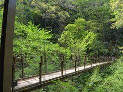 高尾山健康登山(8) 1号路ー高尾山ー4号路-琵琶滝ー高尾山温泉