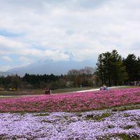 のんびり富士周遊♪。1日目(昼の部)