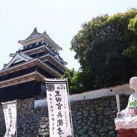 ぐるっと九州旅(3)中津城で黒田官兵衛に想いを馳せる