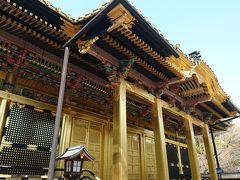東京の神社&御朱印めぐりです【神田明神・上野東照宮・諏訪神社】