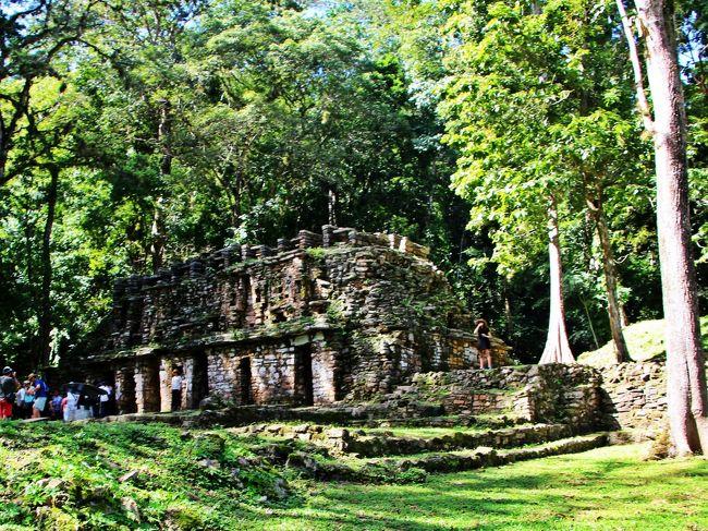 暗闇の密林ラビリンス☆秘境 ヤシュチラン遺跡/マヤ族の末裔が潜むジャングルへ【続・母さんの一人旅-2】