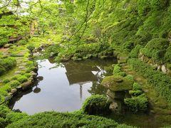 野山の花を巡る「當麻寺・西南院」ハンカチの木にナンジャモンジャ?