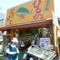 伊豆・伊東旅行 2010/05/21-05/22