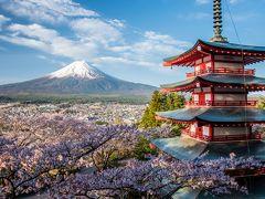 桜と富士山を撮り歩く (1)海外観光客に人気抜群の富士山ビュースポット