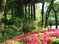東京で神社仏閣&御朱印めぐりです~前編~矢先稲荷神社・東本願寺・春日神社・芝東照宮・増上寺