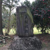 青春18きっぷで行く週末日本百名城巡り二週目 イノシシが出るかもしれない桜咲く箕輪城跡へ