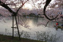 2016春、奥羽の桜巡り(25/38):4月23日(16):弘前市(6):弘前公園、満開の染井吉野と枝垂桜