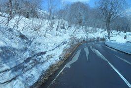 2016春、奥羽の桜巡り(33/38):4月24日(5):津軽鉄道の五所川原駅からバスで奥入瀬へ、雪の壁、ブナの原生林