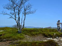 新緑の鈴鹿・千草越えとイブネの苔の絨毯