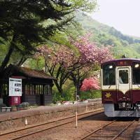 新緑を巡るレトロ旅、わたらせ渓谷鉄道