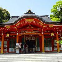 長岡京市 長岡天満宮の参拝・・・キリシマツツジは花が残っていなかった 下巻。