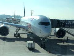サンパウロ・グゥアルーリョス空港とTAM航空、そしてJFK空港のJALラウンジで.......タオルが無い.......事件(サンパウロ/ブラジル)