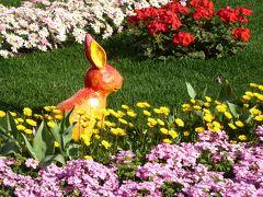 優雅な春の横浜を楽しむ旅♪ Vol3 ☆横浜赤レンガ倉庫:フラワーガーデン2016♪