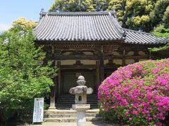 2016春、奈良のお寺の花巡り(5/17):4月30日(5):長岳寺(5):長岳寺、ツツジ、カキツバタ、本堂、鐘楼門、旧地蔵院