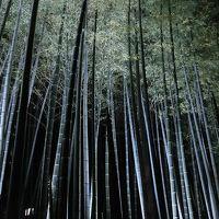 2016GW 苔寺周辺と高野山の旅