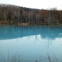 2015年11月 初冬の美瑛へ(2日目-1)青い池へ