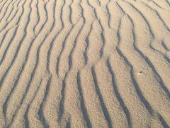 ★鳥取砂丘でのパラグライダーにチャレンジ