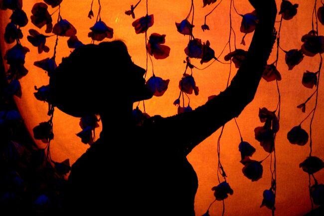 GW・バンコク7日間②(ワット・ポー、ワット・プラ・ケオ(王宮寺院)、カリプソ・ キャバレーのニューハーフショー)。
