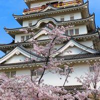 福山-3 福山城 福山城博物館を見学 ☆天守最上階からの眺望も