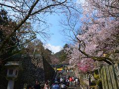 春の四国東半分をまわる旅?