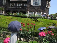 ◎旧古河庭園の薔薇