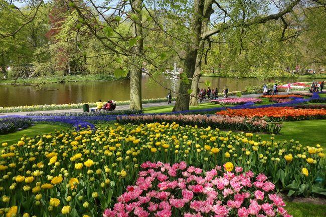 1年前から航空券、<br />ホテル等予約するほど<br />気合を入れてのオランダ旅。<br /><br />春のヨーロッパは初めてで、<br />夜は22時くらいまで明るいので、<br />とても安心のアムステルダムでした。<br /><br />自己責任主義のオランダ。<br />困ってても向こうからは<br />誰も助けてくれないけど、<br />いい意味でほったらかしで<br />心地よかったです。<br /><br />1日目 関西空港---ユトレヒト<br />2日目 ユトレヒト観光---アムステルダム<br />3日目 運河ツアー/ゴッホミュージアム<br />4日目 アムステルダム国立美術館/フォンデル公園/ハイネケンエクスペリエンス<br />5日目 キューケンホフ公園<br />6日目 デ・ホーヘ・フェルウェ国立公園/クレラー・ミュラー美術館<br />7日目 王宮/ザーンセ・スカンス風車村/中央図書館<br />8日目 アムステルダム観光<br />9-10日目 アムステルダム---関西空港<br /><br />1ユーロ=139.29円<br /><br />世界旅行のまとめ<br />https://kunkunkun.work/