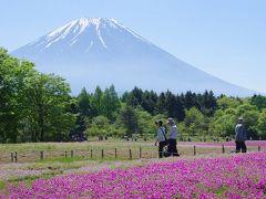 富士五湖周辺を散策