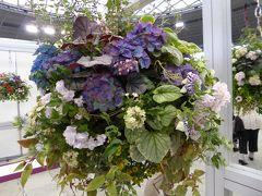 国際バラとガーデニングショウ Vol5 コンテストハンギング 壁飾り・吊るしの魅力なハンギング♪