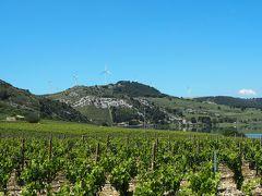イタリアワインと世界遺産の旅(概要)