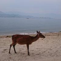 出張のついでにゲーセン行って、宮島で鹿を眺めてきた1泊2日の旅。