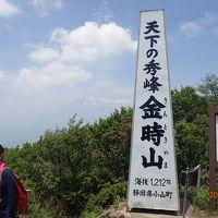 【山行記録9】〜登山シーズン到来〜足慣らしに金時山に登ってきました。