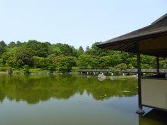 初夏の「国営昭和記念公園」♪ Vol6 「日本庭園」 新緑の滝・スイレン・アヤメ♪
