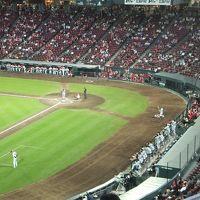 2015 広島アウェイは野球とサッカー観戦【その2】広島でプロ野球観戦