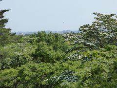 初夏の「国営昭和記念公園」♪ Vol7 「トンボの湿地」「こもれびの丘」 新緑の中を歩く♪