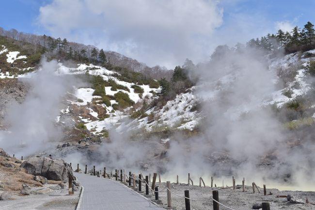GWに8泊9日で秋田、青森、岩手、山形、福島へ行ってきました。<br />良質の温泉、秘湯温泉、湯治宿、混雑していない観光地に癒された東北周遊の忘備録です。<br /><br />〜8泊9日の概要〜<br />◆旅行目的: 温泉 7割/ 観光 3割 (大体)<br />◆移動手段: マイカー<br />◆走行距離: 3,332km<br />◆平均燃費: 24.2km<br />◆使用金額: 105,000円<br /><br />(1of7)<br />http://4travel.jp/travelogue/11137016<br />(2of7)<br />http://4travel.jp/travelogue/11137769<br />(3of7)<br />http://4travel.jp/travelogue/11137793<br />(4of7)<br />http://4travel.jp/travelogue/11137876<br />(5of7)<br />http://4travel.jp/travelogue/11138004<br />(6of7)<br />http://4travel.jp/travelogue/11138196<br />(7of7)<br />http://4travel.jp/travelogue/11138555<br /><br />【1of7の内容】<br />4/29 <br />・名古屋出発<br /> ↓<br />・道の駅 象潟(きさかた)にて車中泊@秋田県にかほ市<br /><br />4/30 <br />・道の駅 象潟 発<br /> ↓<br />・田沢湖/辰子像@秋田県仙北市<br /> ↓<br />・乳頭温泉郷/鶴の湯温泉@秋田県仙北市<br /> ↓<br />・玉川温泉 泊@秋田県仙北市