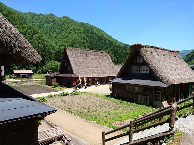 3日目<br />前日に富山から移動してきたばかりなのに、また富山へ向かいます(笑)<br />世界遺産の合掌造りの集落、五箇山。ずっと見てみたかった場所!<br />菅沼集落と相倉集落の両方に行きました。<br />ランチの後は金沢に戻り、兼六園へ。<br />金沢の駅も見て、夕食は駅の近くの大名茶屋で加賀料理。