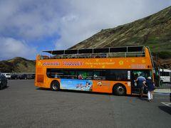 ホノルル観光はトロリーバスの有効活用