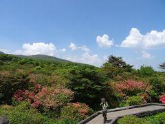 リゾート那須野満喫号で那須へ~八幡のツツジと南ヶ丘牧場へ~