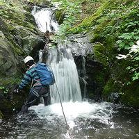 奥多摩峰谷川水系 茂窪谷で小滝が続く楽しい沢歩き