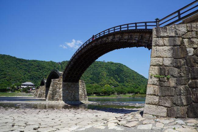 岩国といえば、錦帯橋。日本三名橋や日本三大奇橋にも数えられて、その知名度は抜群。全長193.3mの木造5連のアーチは、岩国藩3代当主吉川広嘉が中国の西湖に架かる橋をヒントに作らせたものですが、長く伸びた桁のない木造のしなやかなアーチ部に対して、橋脚に相当するのはこれ以上なくがっちりした何だか城の石垣のような塊り。優美な姿と濁流を屁とも思わない頑強さを併せ持っていて、一度見ると忘れることができない。その強烈なインパクトがこの橋の最大の魅力だと思います。<br /><br />そして、それに加えて、錦川の美しさと一帯の箱庭のような街並み。特に、春の桜の季節とか最高。前回来た時はちょうど桜の時期で、花吹雪の中の錦帯橋はえもいわれぬ美しさだったのですが、今回も花ショウブがちらほら咲いていて、またまた目を楽しませてくれました<br /><br />ということで、錦帯橋の周辺は町全体が完全に観光地化されていて、のどかそのものなのですが、やっぱり歴史を考えた時に思い起こされるのは、藩祖、吉川広家と幕末の長州征伐でしょう。<br /><br />吉川広家は、毛利元春の次男。関ヶ原の戦い際には、家康の本陣を見下ろす南宮山に陣取っていたのですが、家康に毛利の本領安堵を条件に戦闘に加わらず、また、後方に陣取る毛利本隊の毛利秀元、安国寺恵瓊、長宗我部盛親の軍を抑える働きをします。父、吉川元春は、毛利元就の次男であり、兄の毛利隆元、弟の小早川隆景とともに三本の矢の一人として毛利を支えた人物ですから、なんとしてでも毛利家を潰してはならないという強い思いがあったものと思いますが、毛利輝元は大阪城に詰めていたとはいえ西軍の大将ですからさすがに本領安堵は守られず、毛利家は周防・長門の二か国に削られることになってしまいます。広家の行動はスタンドプレーだったこともあり、二か国でも存続したと考えるか、南宮山から打って出ていれば、そもそも西軍の勝機もあったと考えるか等々、毛利家の家中での評価はけっこう微妙だったとも想像されます。毛利本家は、江戸時代のほとんどを通じて、岩国は藩として認めない一方、徳川幕府は藩としての処遇をしていたとかも、なかなか際どいものがありますね。余談ですが、関ヶ原で毛利本家を率いていた毛利秀元は輝元の養子で跡を継ぐ予定だったのですが、輝元に実子、秀就ができるとこれを辞退。秀元は秀就の家来と言う立場となるのですが、そこがぎくしゃくすると広家が重きを成したり。やっぱり、存在感のある人物だったことは確かなようです。<br /><br />一方で幕末の長州征伐。一次長州征伐は、攘夷の決行に対し、列強四国からその報復を受けるという下関戦争を戦っていたこともあり、禁門の変の責任を取らされる形で三家老が切腹し、幕府に屈した長州藩でしたが、二次の長州征伐では高杉晋作の正義派が主導権を握り、幕府軍を見事に撃退します。幕府軍は、「芸州口」「周防大島口」「石州口」「小倉口」の4方面から攻め込みますが、岩国藩が受け持ったのは、正面とも言うべき「芸州口」。そして、幕府四天王の彦根藩23万石の井伊家、高田藩15万石の榊原家の軍勢をこてんぱんに打ち破ります。その後、幕府軍も近代化した紀州藩が出てくるとこう着状態になりますが、いずれにしても長州征伐の目論見は完全にくじかれるわけです。それにしても、岩国藩が諸隊の支援を受け最新兵器を使っていり、幕府軍も厭戦気分があったとはいえ、ちょっと出来過ぎ。これだけの力がどこに備わっていたのかちょっと不思議な気持ちにもなってきますが、関ヶ原の雪辱を晴らしたいという気持ちも少なからずあったと考えれば、ちょっと納得感もあるかもしれません。