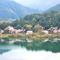 青春18切符一人旅 水の都 伊予西条へ~幻想的な黒瀬ダム~うちぬき水と満開の桜