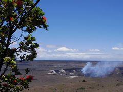 3歳児1歳児連れGWハワイ4島クルーズ:ハワイ島