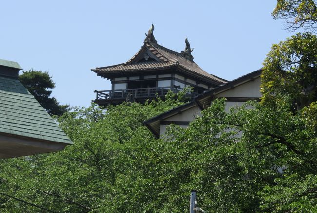 日本百名城の一つ、丸岡城の紹介の締め括りです。現存する12の天守の内の一つとされ、愛知の犬山城と、どちらが最も古い天守かを巡っての論争があります。