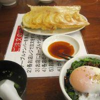 2015 休みの日に宇都宮に餃子を食べに行ったり地元でお昼ごはん食べたりしたのをまとめてみました