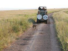 二度目のサファリは憧れのタンザニアへ その2